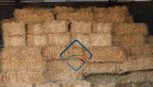 Wheat Hay Stock